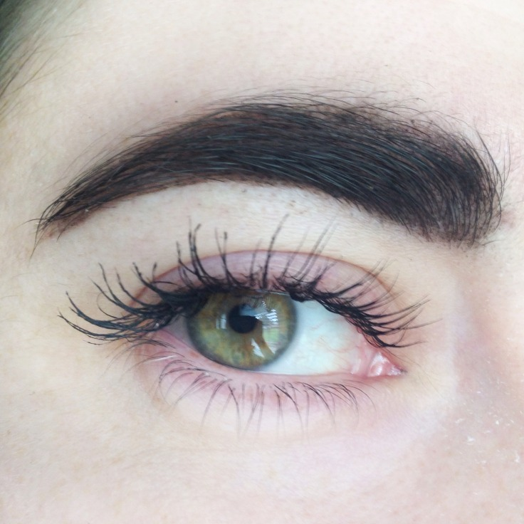Kat_Von_D_Super_Brow_pomade_brow_brush_Influenster_voxbox_review_brow_look